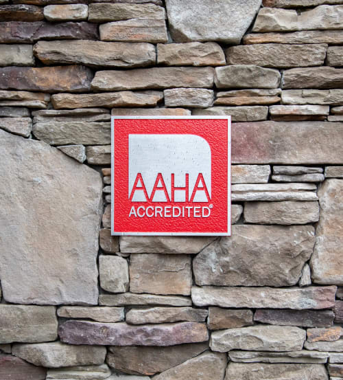AAHA Accredited & Cat-Friendly Practice Certified, Flat Rock vet